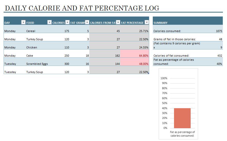 Food Calories Log Template